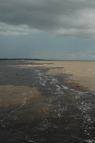 The Meeting of the Waters, near Manaus, Brazil
